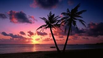 Sunset on a tropical beach wallpaper 6856