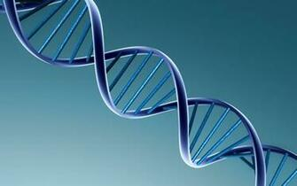 3d view dna 1920x1200 wallpaper High Quality WallpapersHigh