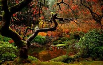 Autumn Japanese Garden Wallpaper 1920x1200 Wallpapers 3d fr Desktop