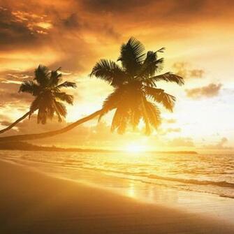 Caribbean Coast Sunset iPad Wallpaper Download iPhone Wallpapers