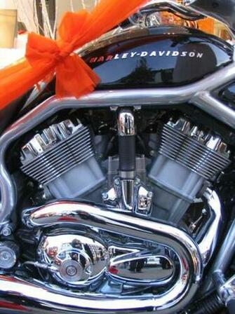 First Wallpaper Border harley davidson wallpaper border