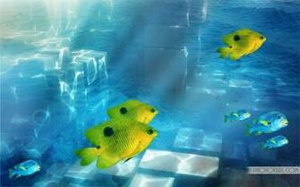 Cool Fishing Backgrounds to Set This Cool Yellow Fish