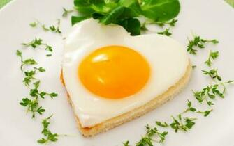 Egg   Food Wallpaper 31119292