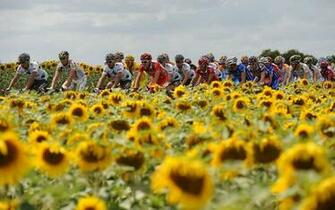 description sports wallpapers tour de france cycling 7 tour de france
