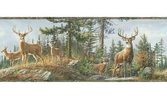 Lodge Hunting Wallpaper Border White Tail Crest Buck Deer Wall Border