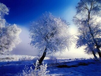 Nature winter Wallpaper Beautiful nature Winter wallpapers Desktop