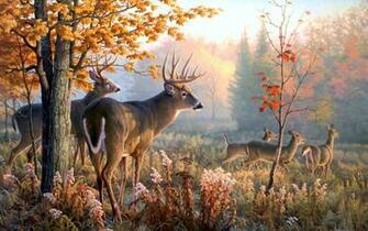 Wallpaper wallpaper Deer Art Wallpaper hd wallpaper background
