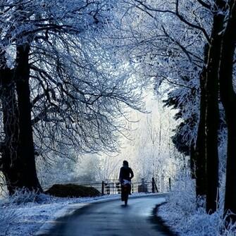 Winter Road Scene iPad Air Wallpaper Download iPhone Wallpapers