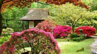 Download Wallpaper Japanese garden 1600 x 900 widescreen