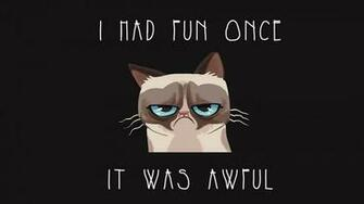 Grumpy cat Wallpaper 2442