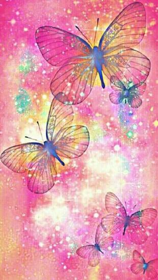 Colourful butterfly bugs in 2019 Butterfly wallpaper