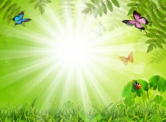 Fabulous Background With Insects Backgrounds For PowerPoint