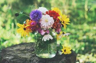 Bunch Of Flowers In Glass Jar On Tree Stub Summer Background