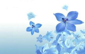Summer Flower Blue Flowers