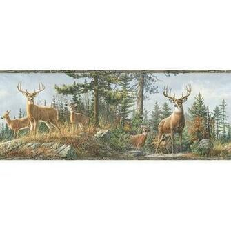 Fashions Outdoors Fern Whitetail Portrait Wildlife Wallpaper Border