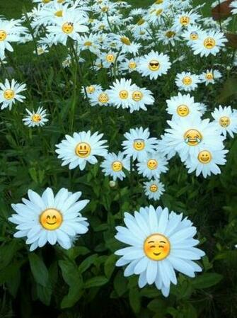 background cute emoji flower tumblr wallpaper emojis   image