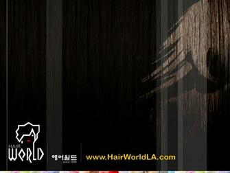 Hair Stylist Desktop Wallpaper Hair world salon   los angeles