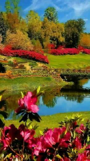 wallpaper beautiful nature download wallpapers for your