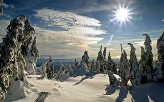 Winter Sun Wallpaper Winter Nature Wallpapers in jpg format for