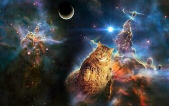 Space cat wallpaper dump   Album on Imgur