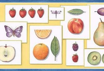 KITCHEN FRUITBUTTERFLYLEAF wallpaper border PB58002B eBay