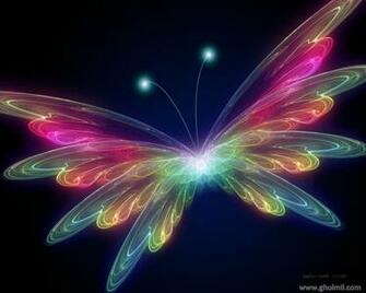 Colorful butterfly wallpaper Butterfly wallpaper for walls Butterfly