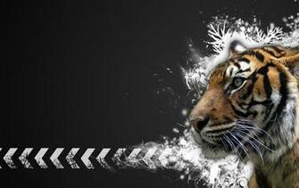 tiger wallpapers hd Tiger Vector Widescreen HD Wallpaperjpg