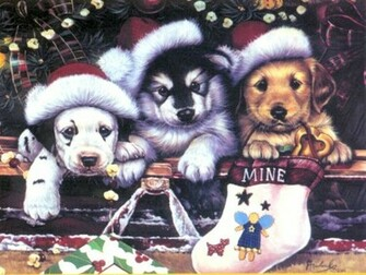 Beautiful Christmas Candles Desktop Backgrounds Funny Pictures Cool