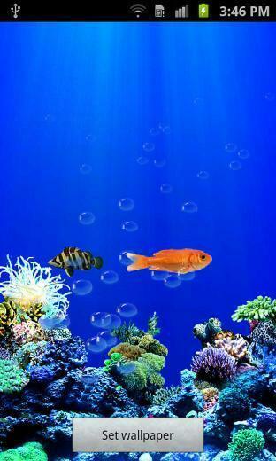 Aquarium Live Wallpaper Android Live Wallpaper download