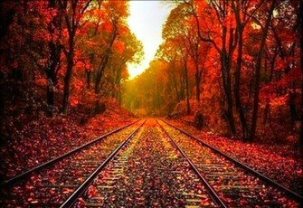 Beautiful Autumn Wallpaper Desktop Background Wallpapers HD