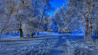 Beautiful Winter Backgrounds