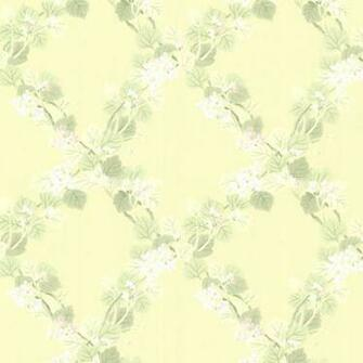 Delphia Yellow Jasmine Trellis Wallpaper   Contemporary   Wallpaper