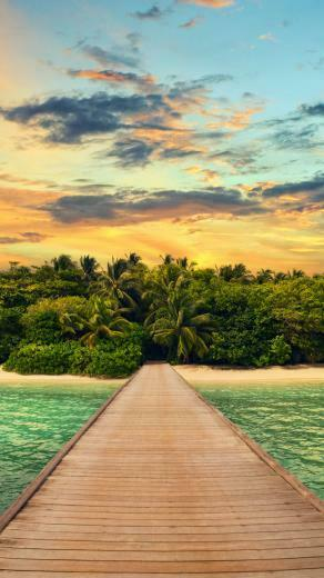 Exotic Island Forest Summer Vacation Android Wallpaper download