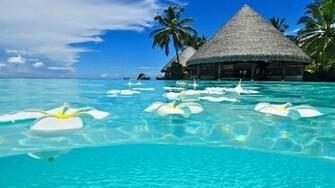 HD Exotic Paradise Wallpaper Download   Wallpapers Mela