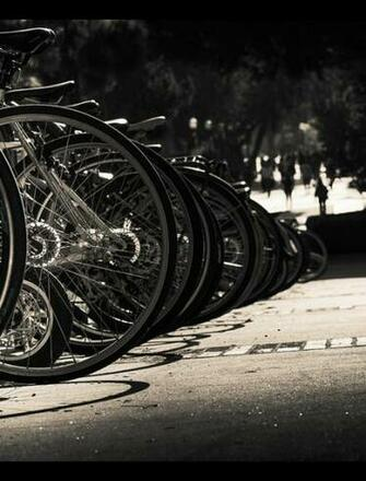 Bikes in Black and White Wallpaper for Phones and Tablets