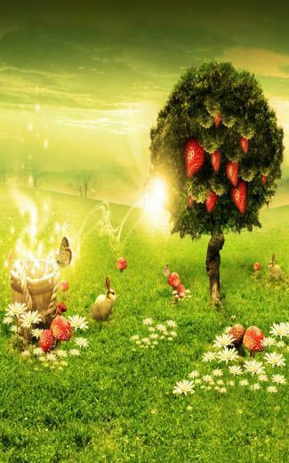 nature wallpaper for android cell phonejpg