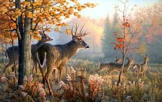Deer Art Wallpaper wallpaper Deer Art Wallpaper hd wallpaper