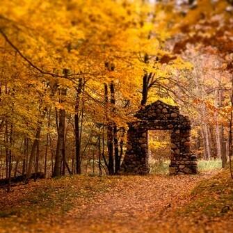 Beautiful fall colors ipadwallpapersme