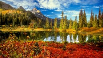 Beautiful Fall Backgrounds 35856 Hd Wallpapers Background   HDesktops