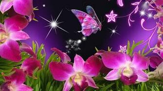 Butterfly Carolyn Gunter Butterfly wallpaper Butterfly
