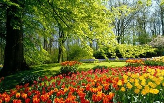 spring park wallpaper spring nature wallpaper 1280 800 widescreen 1215
