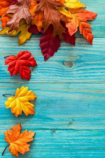 28 Breath Taking and Most Beautiful Fall Wallpaper for Your iPhone