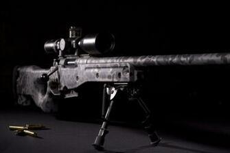 Sniper Rifle W