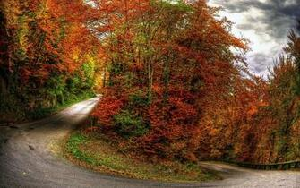 Wallpapers Fall Hairpin Myspace Backgrounds Fall Hairpin Backgrounds