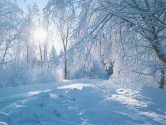 beautiful nature winter wallpaper Wallpaper Express is