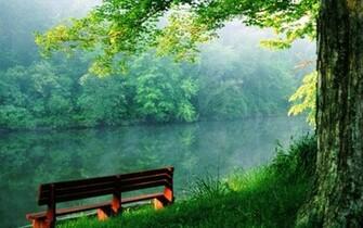 Beauty of nature   Random Wallpaper 4884759