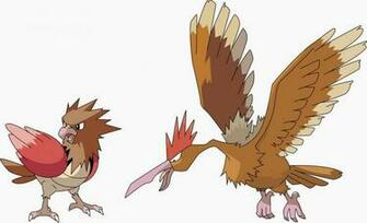 Pokemon Spearow Evolve   Hot Girls Wallpaper