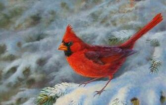 Winter Cardinal Images wallpaper wallpaper hd background desktop