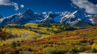 Best 38 Aspens Wallpaper on HipWallpaper Aspens Wallpaper