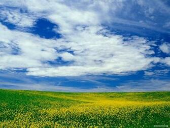 Wallpaper   Nature wallpaper   Blue Sky And White Cloud